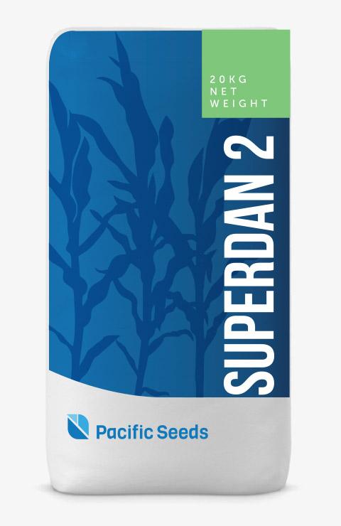 Superdan 2