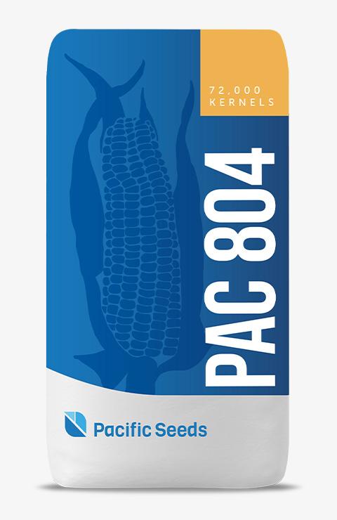 PAC 804